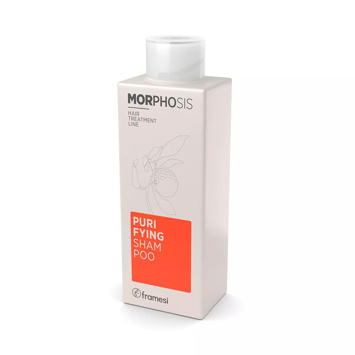 Framesi PURIFYING SHAMPOO - Šampón proti lupinám
